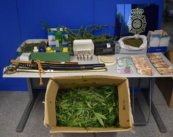Detenido un varón de 60 años por una plantación de marihuana