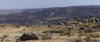 Navalacruz acumula el 25% de las hectáreas quemadas en 2021