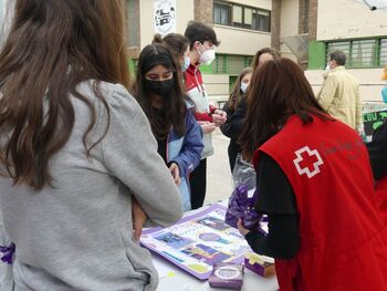 Cruz Roja y el IES Alfonso VIII construyen un mural de fotos