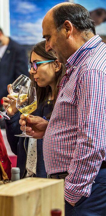 El consumo de vino empieza a salir de la crisis