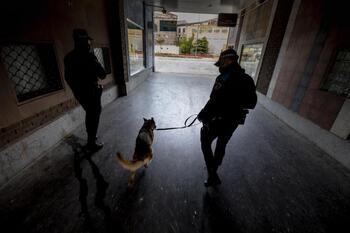 La Unidad Canina 'caza' a un varón tras una peligrosa huida