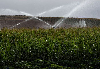 PP exige plan regional del agua e incluir pozos del Guadiana