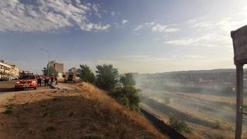 El Ayuntamiento insta a Adif a limpiar los terrenos