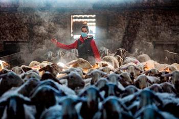 Asaja forma online a 140 agricultores y ganaderos
