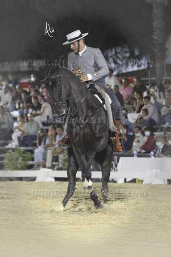 Óscar García, en el nacional de doma vaquera