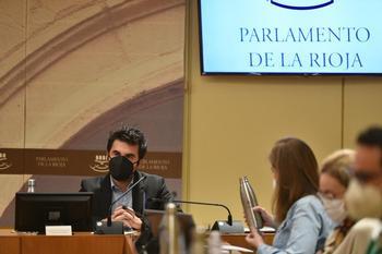 Álex Dorado, durante su comparecencia en el Parlamento.