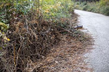 Diputación invierte 900.000 euros en mejorar caminos rurales