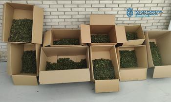 57 kilos de marihuana en la monovolumen retirada el lunes