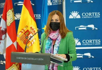 El PSOE pide consenso para aprobar el modelo territorial