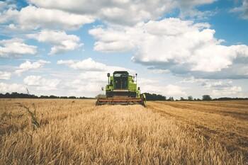 El salario de los agricultores aumenta un 1,6% en Toledo