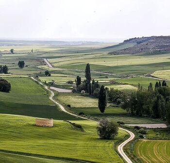 El banco de tierras 'temporal' avanza con 5.100 hectáreas