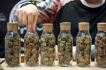 Juzgados por fumar cannabis en un local de marihuana legal