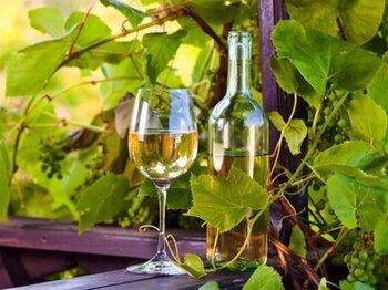 ¿Eres aficiond@ al vino blanco?, tienes que leer esto...