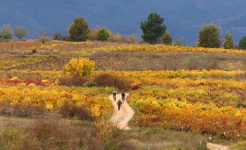 La Aemet prevé un otoño cálido y seco en Castilla y León