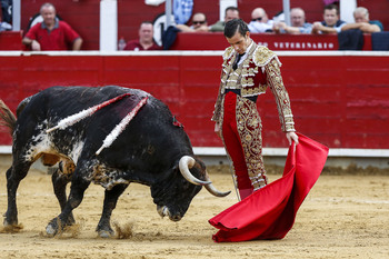 Andrés Palacios cortó una oreja en Jadraque