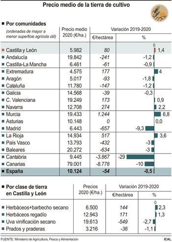 La tierra de cultivo se encarece un 1,4% en la pandemia