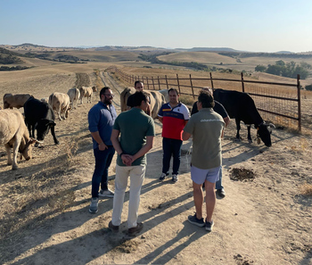 NNGG reivindica el sector cárnico en la comarca de Talavera
