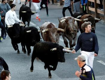 Un herido por asta de toro en el segundo encierro de Tafalla