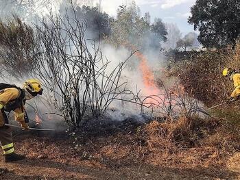 Activo un incendio forestal en Villarrubia de Santiago
