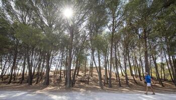 La Grajera propone retos y acertijos en el parque