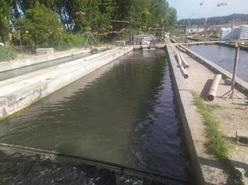 Castilla-La Mancha destina 200.000 euros a la acuicultura