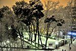 Parque Lineal de Albacete.