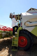 La Junta ofrece una estimación de la cosecha de cereales