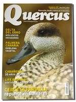 La cerceta pardilla repunta en Baleares