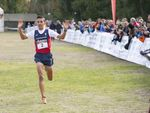 Cross Mariano Haro
