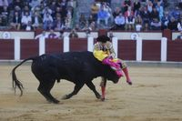 Primera corrida de toros en fiestas