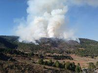 Incendio en Paterna del Madera