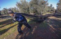 Francisco MartÁnez Arroyo se reune con empresarios agrarios de pozuelo de calatrava, olivar,campo de olivos,aceituna,campaña de la aceituna,recogida de la aceitura,jornaleros,trabajadores extranjeros,trabajadores del campo