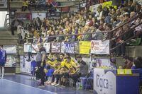 El Blasgon y Bodegas Ceres Villa de Aranda vence por 29-21 al Palma del Río.