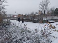 Nieve en Guardo (06/12/20)