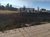 Incendio en un solar en Santos Pilarica