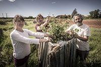 El bosque social de Rioseco sigue creciendo