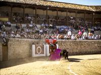 Los toros vuelven a Medina de Rioseco