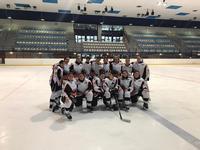 Milenio, en la cima del hockey hielo masculino y femenino