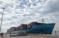Confirman la cepa india en tripulantes confinados en Valencia