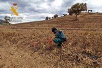 Abren diligencias a agricultores por incendio