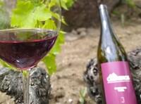'De tardeo en la Uni' con los vinos de Cebreros