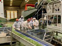 La Diputación de Cuenca colabora con el The Real Green Food