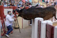 Los toros vuelven a Valladolid