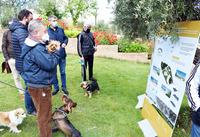 El parque La Rincona tendrá espacios deportivos y de ocio