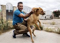 «Los peligrosos son los dueños y no los perros»