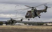 La gran prueba de fuego para 900 militares