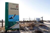 España incumplió varias de sus obligaciones para proteger Doñana