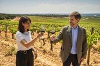 Investigan cómo beneficia el vino a la salud cardiovascular