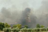 El humo impide circular entre Hellín y Elche de la Sierra