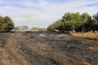 Una colilla provocó el incendio de la carretera de Renedo